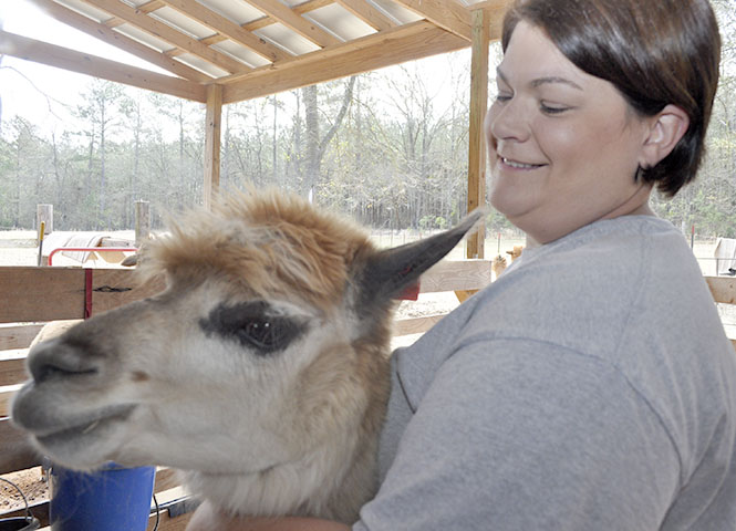 Alicia Holbrook with Misty the alpaca