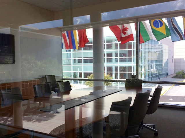 Light spills into a meeting boardroom at the Darla Moore School of Business